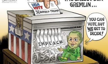 Ballot Box Germlin